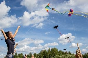 Best Kites for Beginners & Kids